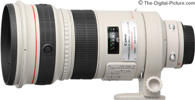 Canon EF 300mm f/2.8 L IS USM Lens Review