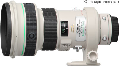 Canon EF 400mm f/4 DO IS USM Lens Review