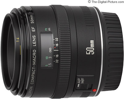 Canon EF 50mm f/2.5 Macro Lens Review