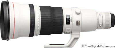 Canon EF 600mm f/4L IS II USM Lens Tested on 5Ds R