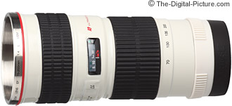 Canon EF 70-200mm f/4.0 L USM Lens Mug Review