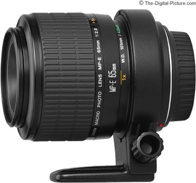 Canon MP-E 65mm 1-5x Macro Lens Review