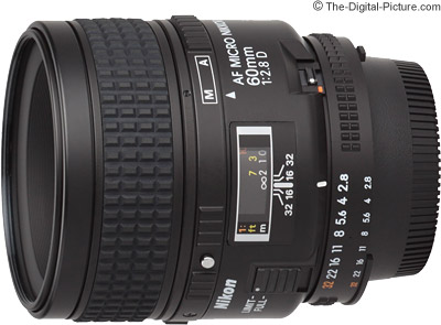 Nikon 60mm f/2.8D AF Micro Nikkor Lens Review