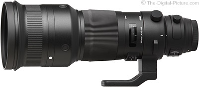 First Looks at Sigma 500mm f/4 DG OS HSM Sports Lens Image Quality