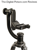 Wimberley Gimbal Tripod Head (Original) Review