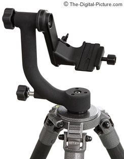 Wimberley Tripod Head II WH-200 Review
