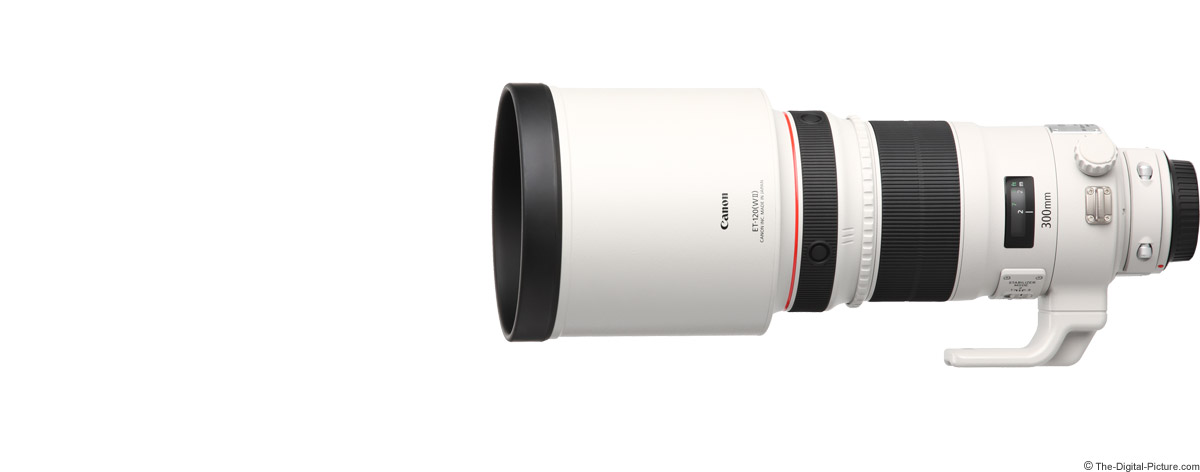 Canon EF 300mm f/2.8 L IS II USM Lens