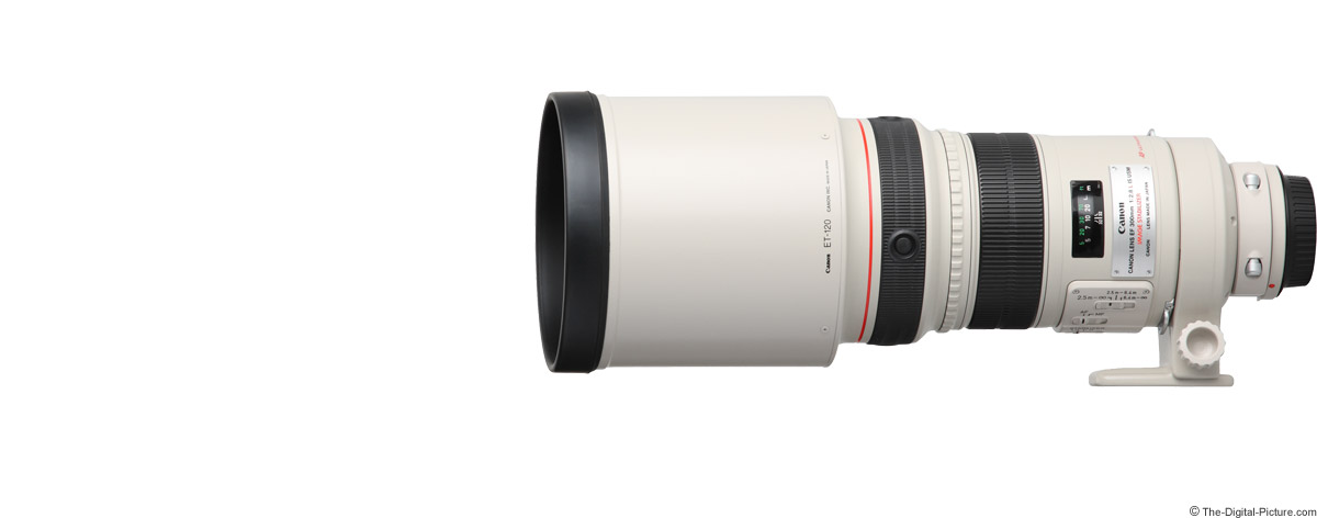 Canon EF 300mm f/2.8 L IS USM Lens Product Images