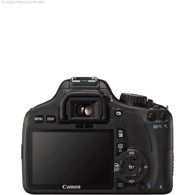 Canon EOS Rebel T2i / 550D Back View Comparison