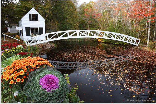 Somesville Bridge and Selectmen's Building