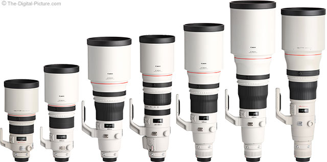 Canon Big White Lenses with Hoods Spring 2013 Family Picture