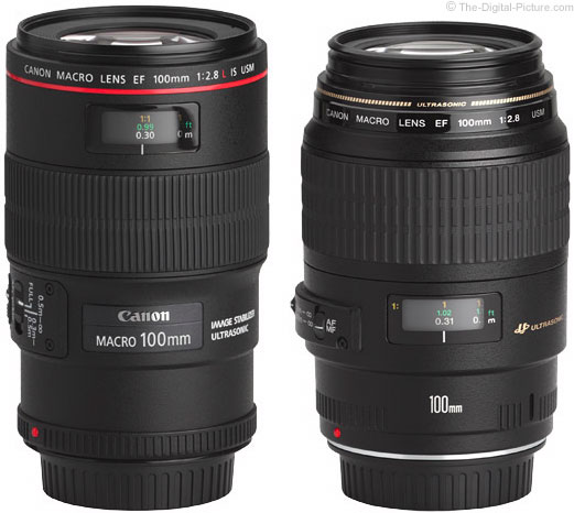 Should I Get the Canon EF 100mm f/2.8L Macro IS USM or the EF 100mm f/2.8 Macro USM?