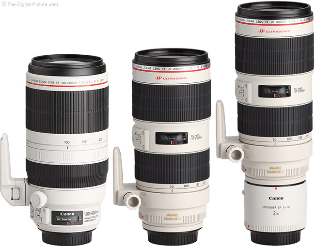 Canon EF 70-200mm f/2.8L IS II and 2X Extender Compared to the EF 100-400mm f/4.5-5.6L IS II Lens
