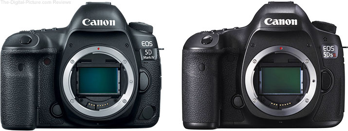 Should I get the Canon EOS 5D Mark IV or the 5Ds/5Ds R?