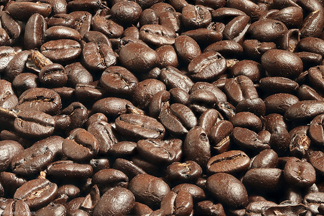 Coffee Beans Focus Stack Using Canon W E1 Wi FI Adapter