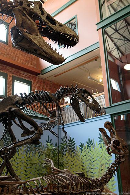 Museum of World Treasures Wichita KS