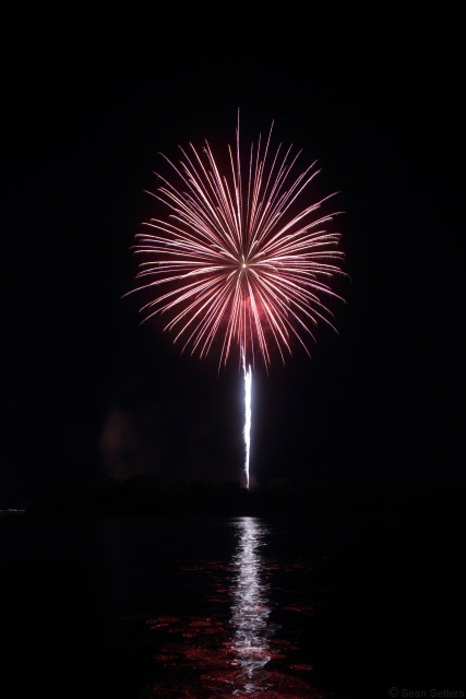 Savannah Fireworks Single Frame