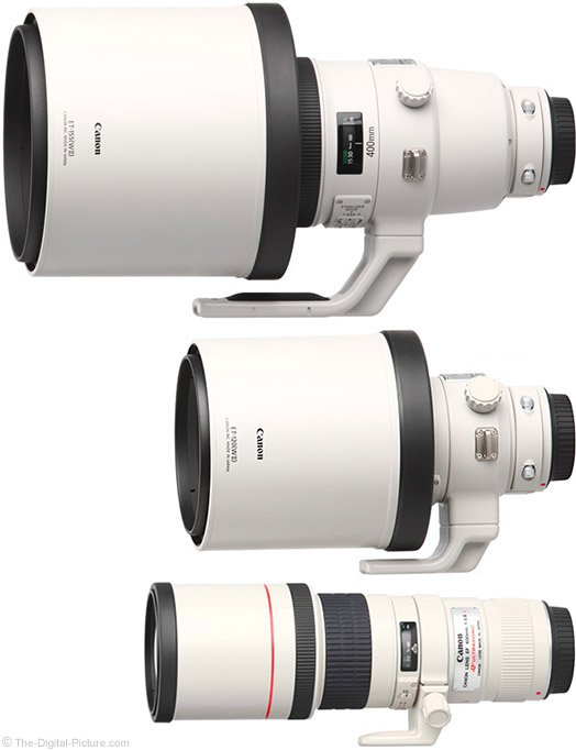 Canon 400mm Prime Lens Comparison Hoods Reversed
