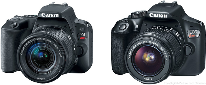 Should I Get the Canon EOS Rebel SL2 or Rebel T6?