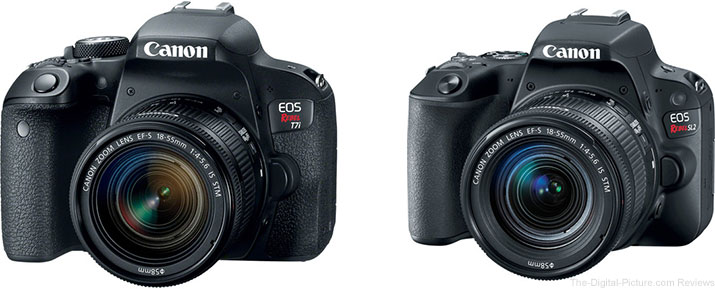 Canon EOS Rebel T7i / 800D and Rebel SL2 / 200D DSLR Cameras