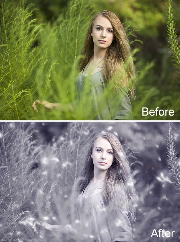 Portrait Before After 5DayDeal Photography Bundle Plugins