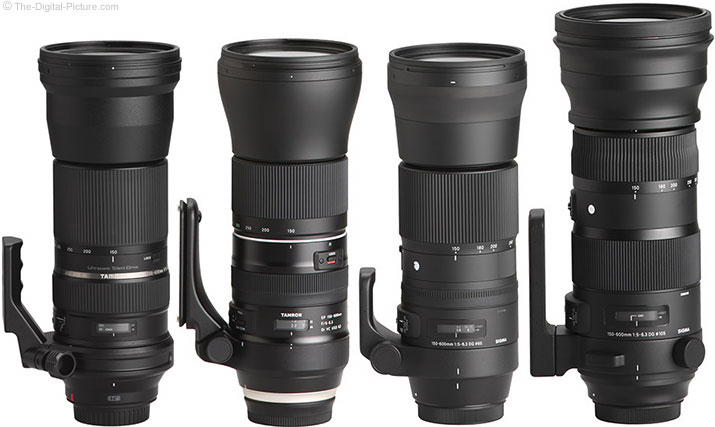 Tamron/Sigma 150-600mm Lens Comparison