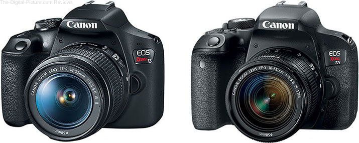 Should I Get the Canon EOS Rebel T7i/800D or the Rebel T7/2000D?