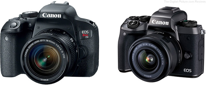 Should I Get the Canon EOS Rebel T7i/800D or the EOS M5?