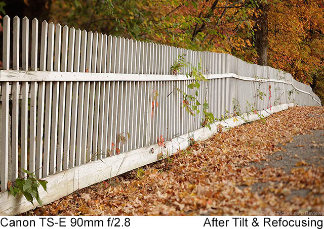 Canon TS-E 90mm f/2.8 Lens  Fence Example After Tilt and Refocusing
