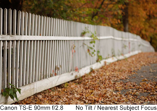 Canon TS-E 90mm f/2.8 Lens Fence Example No Tilt Nearest Focus