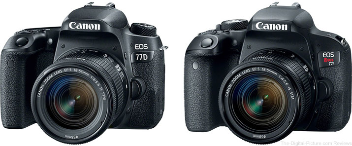 Should I Get the Canon EOS 77D or the Canon EOS Rebel T7i / 800D?