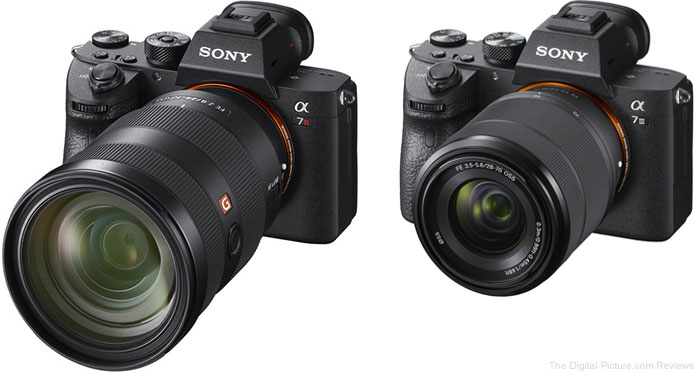 Should I Get the Sony a7R III or the Sony a7 III?