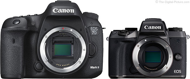 Canon EOS 7D Mark II and M5 Cameras