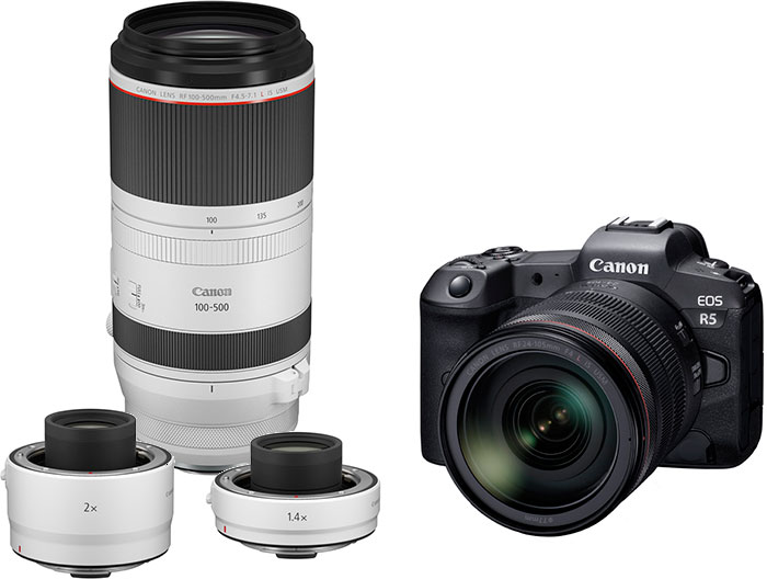 Canon Announces Development of the Full-Frame Mirrorless R5