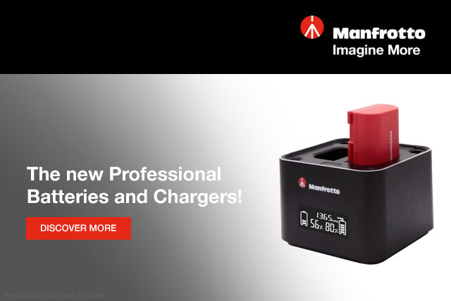 Manfrotto Professional Batteries and Chargers