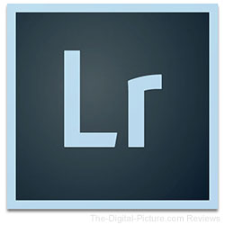 Lightroom Icon Logo