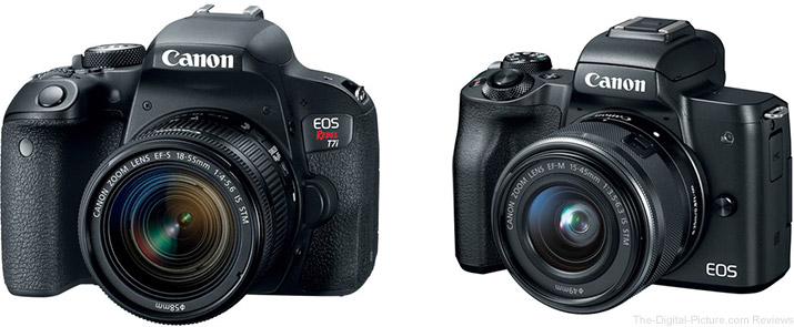 Should I Get the EOS Rebel T7i/800D or the EOS M50?