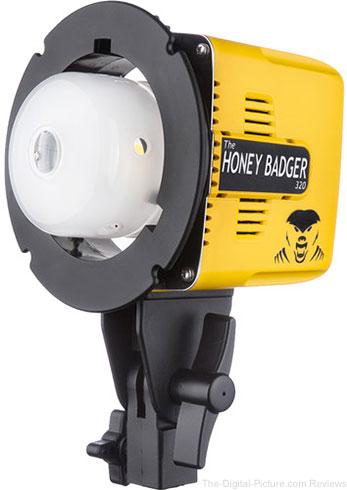 Interfit Honey Badger 320Ws Compact Flash Head
