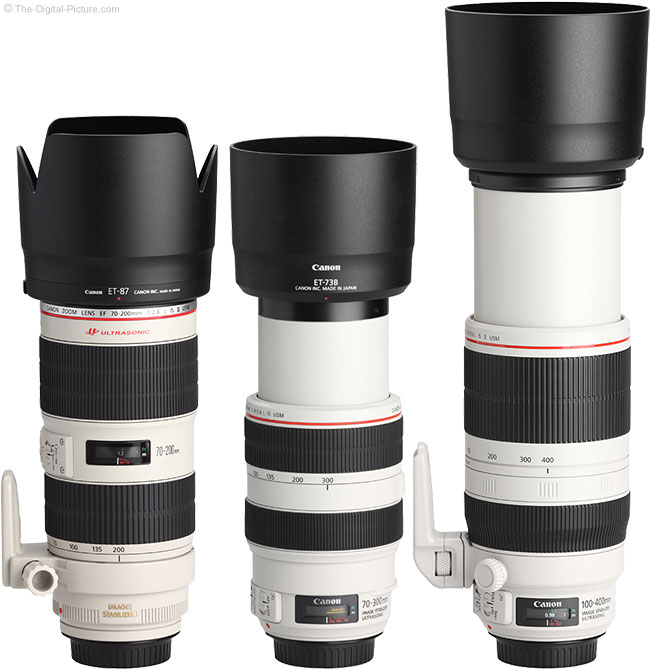 Canon EF 100-400mm L IS USM Lens Compared to Similar Lenses with Hoods
