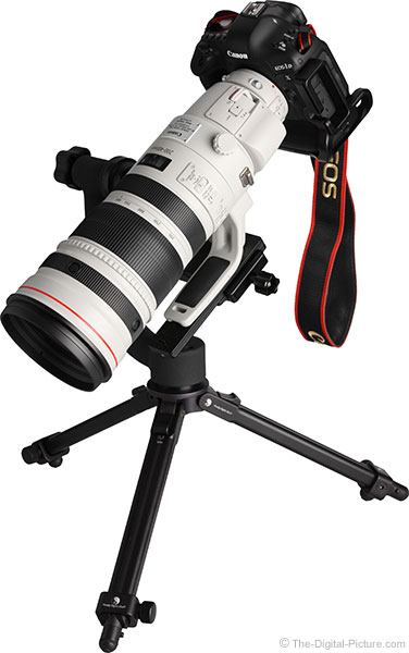 Canon EF 200-400mm f/4L IS USM Ext 1.4x Lens on Tripod