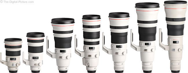 Canon Super Telephoto Lens Comparison with Hoods - Spring 2013
