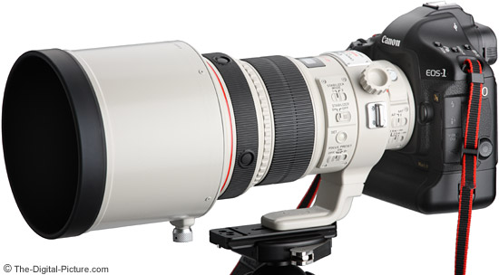 Canon EF 200mm f/2L IS USM Lens mounted to a 1Ds Mark III DSLR