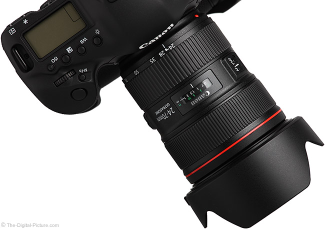 24-70 L II on Canon EOS-1D X DSLR - Angle View