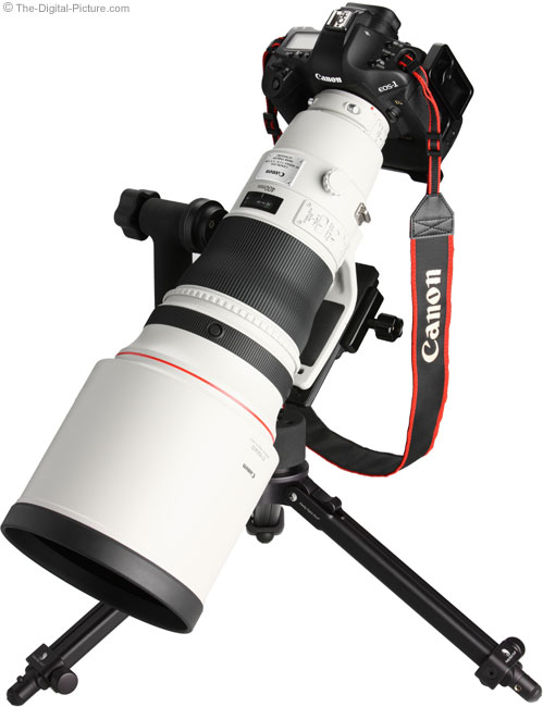 Angle View on Canon EOS-1Ds Mark III DSLR Camera