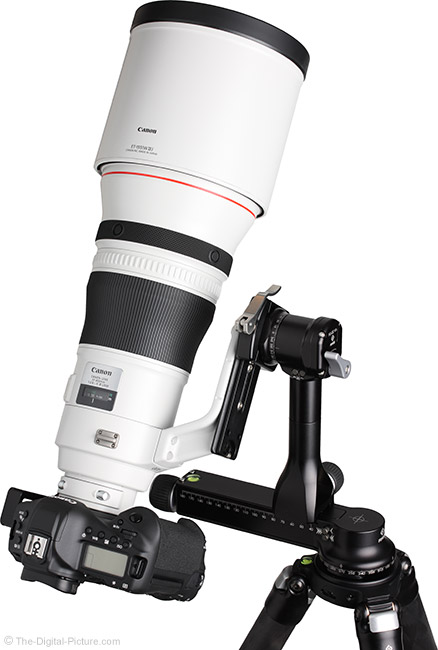 Canon EF 400mm f/2.8L IS III USM Lens Vertical