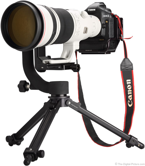 Canon EF 500mm f/4L IS II USM Lens Without Hood on Small Tripod
