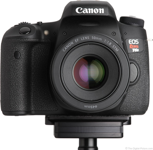 Canon EF 50mm f/1.8 STM Lens on EOS Rebel T6s
