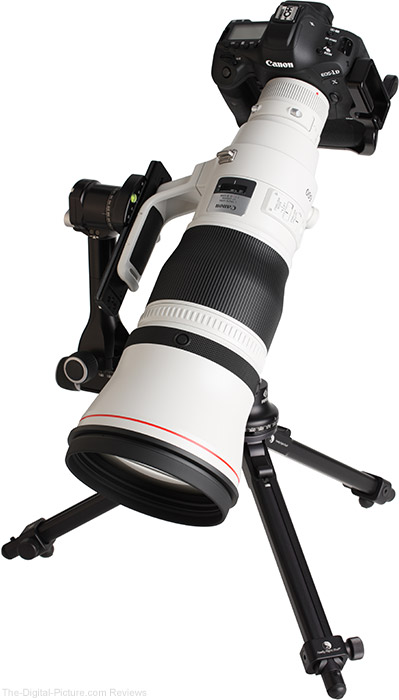 Canon EF 600mm f/4L IS III USM Lens Angle View