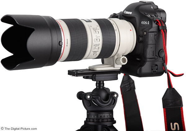 Canon EF 70-200mm f/2.8 L IS II Lens with Wimberley P30 Lens Plate