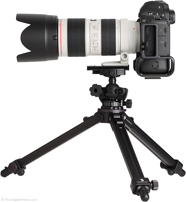 Canon EF 70-200mm f/2.8L IS III USM Lens on Tripod with Hood